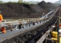Pekerja melakukan inspeksi pengangkutan batu bara di atas ban berjalan./Bloomberg - Dadang Tri