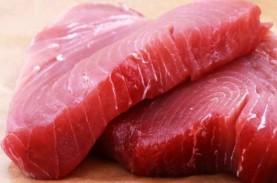 Makan Ikan Tuna Bikin Kolesterol Naik, Kok Bisa?
