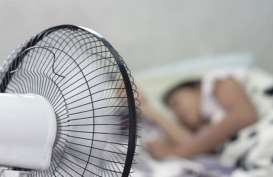 Mengonsumsi Suplemen Magnesium Ampuh Tingkatkan Kualitas Tidur?