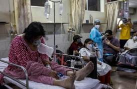 Covid-19 Mengganas di India, Warga Pakai Kencing dan Kotoran Sapi untuk Tingkatkan Kekebalan Tubuh