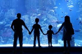 Jakarta Aquarium & Safari Tetap Buka di Libur Lebaran