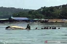 Perahu Wisatawan di Kedung Ombo Terbalik, 20 Orang…
