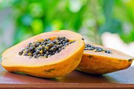 Cegah Virus Corona, 13 Makanan Ini Meningkatkan Imun…