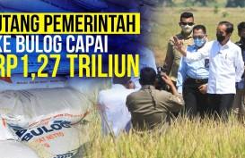Buwas Ingin Pemerintah Lunasi Utang Rp1,27 Triliun