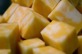 Bolehkah Pengidap Kolesterol Tinggi Makan Keju?