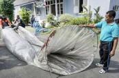 Awas! Terbangkan Balon Udara Liar, Kena Denda Rp500 Juta