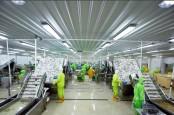Sesuai Target, Laba Bersih dan Penjualan Panca Mitra (PMMP) Moncer