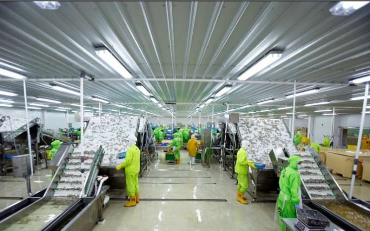 Suasana di salah satu fasilitas produksi PT Panca Mitra Multiperdana Tbk. - istimewa