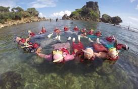 5 Destinasi Wisata Bahari Eksotis di Yogyakarta