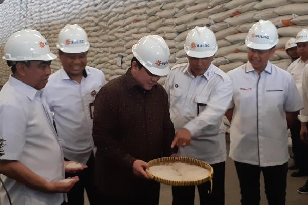 Menteri BUMN Erick Thohir (tengah) menunjukkan sampel stok beras di Gudang Bulog Divre DKI Jakarta, Rabu (4/3/2020).  - Ilman A. Sudarwan