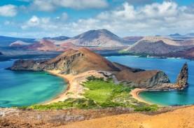 Mengintip Keindahan Kepulauan Galpagaos, yang Bakal…