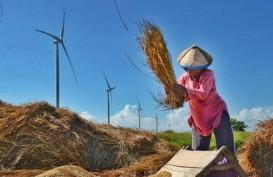 UNDP Gelar Kompetisi Foto Perempuan dan Energi Bersih, Ini Hadiahnya