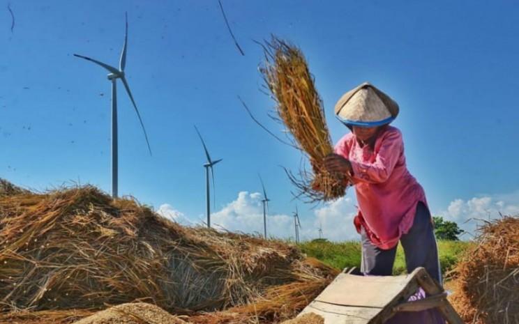Perempuan petani.  - UNDP.
