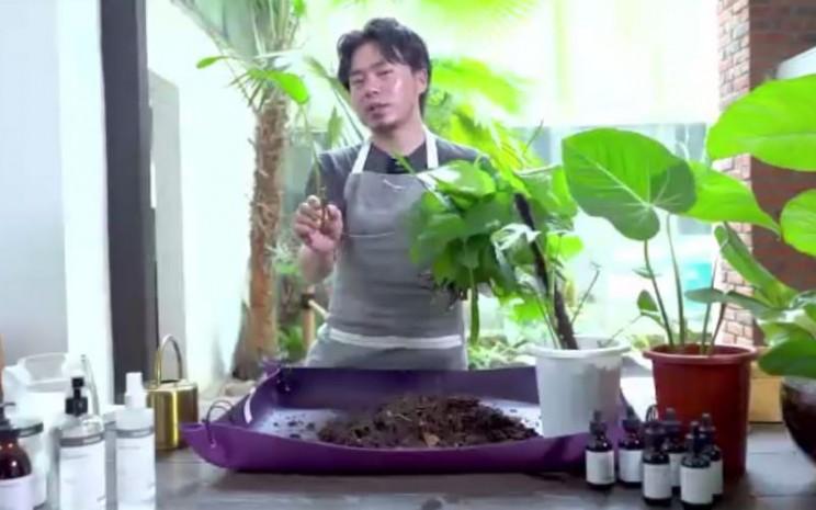 Asoka Remadja yang populer sebagai traveler menjadikan hobi menanamnya sebagai bisnis yang di tekuni.  - Bisnis.com/JANLIKA