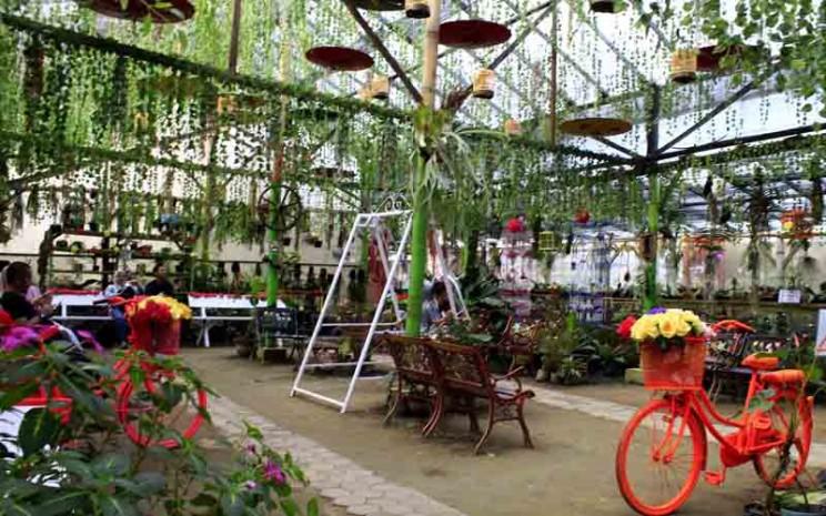 Tanaman bunga hias terlihat indah di Lezatta Green House yang membuat setiap pengunjung datang tiada hentinya untuk berswafoto untuk disebarluaskan di media sosial. - Bisnis/Noli Hendra