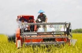 OKI Siapkan 59.118 Hektare Lahan Sawah untuk Food Estate