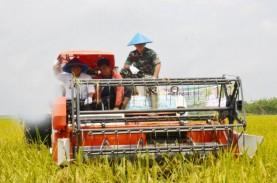OKI Siapkan 59.118 Hektare Lahan Sawah untuk Food…