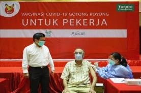 Apical Group Mulai Vaksinasi Karyawan di Indonesia