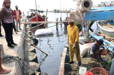 Kota Cirebon Kembangkan Potensi Kerang Hijau