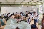 Hijrah ke Digital, Brand Peter Nation Raup Untung di Masa Pandemi