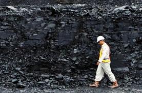 Program Hilirisasi Industri Batu Bara Kaltim Bergantung…