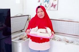 Jualan di Platform Marketplace, Omzet UMKM Palembang…