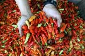 Harga Ayam Ras dan Cabai Merah Turun, Minggu Kedua Juni Deflasi 0,09 Persen