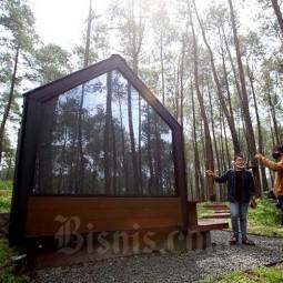 Bobocabin Hadirkan Kemah Dengan Memadukan Teknologi dan Keindahan Alam