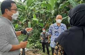 Tempat Sampah di Bogor Bakal Disulap Jadi Hutan Kota