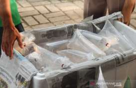 Penyelundupan Benih Lobster Rp23 Miliar di Merak Digagalkan