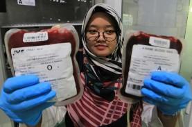 Hari Donor Darah : Kaum Muda Jadi Fokus Kampanye WHO