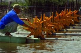 Dorong Peningkatan Ekspor Udang, Menteri KKP Paparkan Strateginya
