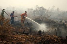 Masuki Musim Kemarau, Hotspot di Riau Capai 23 Titik