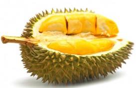 Durian Malaysia jadi Primadona Pesta Belanja di China