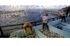 Geopolitik Industri Seafood & Kesiapan Perikanan RI
