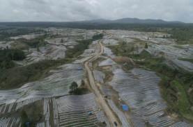 Tak Ada Agenda Konstruksi Food Estate 2022, Hanya…