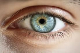 Keren Nih, Ternyata Kecerdasan Bisa Diukur dari Pupil…