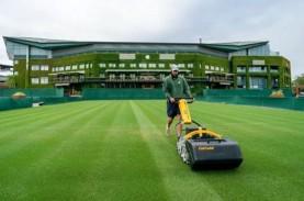 Khalayak Tenis Sukacita Sambut Kembalinya Wimbledon…