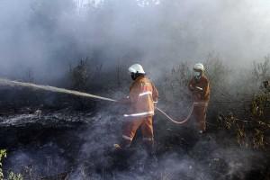 Kebakaran Lahan Gambut di Pontianak